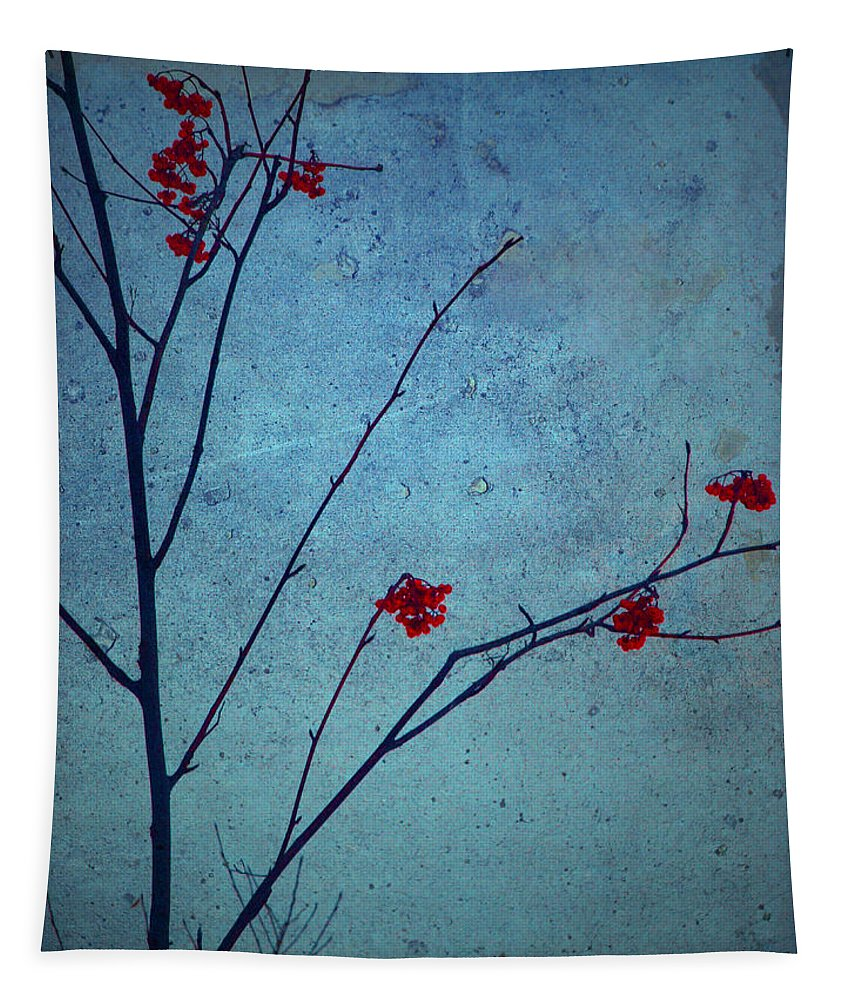 Simplicity Tapestry featuring the photograph Red Berries Blue Sky by Tara Turner