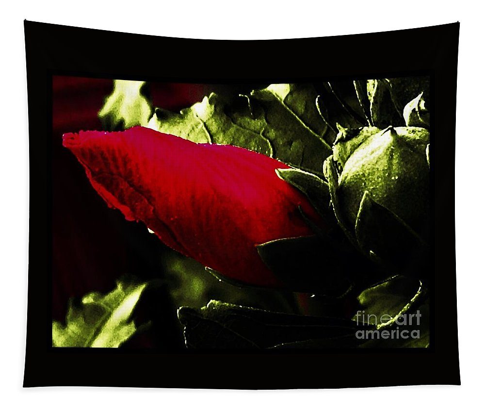 Red Tapestry featuring the photograph Red Bud On Green Background by Debra Lynch