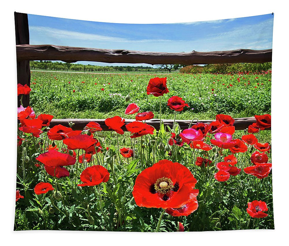 Red Corn Poppies Tapestry featuring the photograph Red Corn Poppies At The Fence by Lynn Bauer