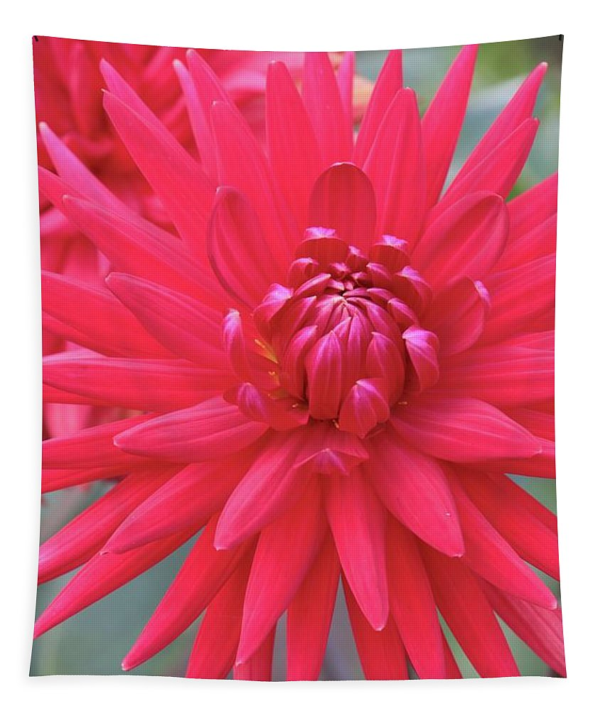 Dahlia Tapestry featuring the photograph Red Dahlia Delight by Carol Groenen