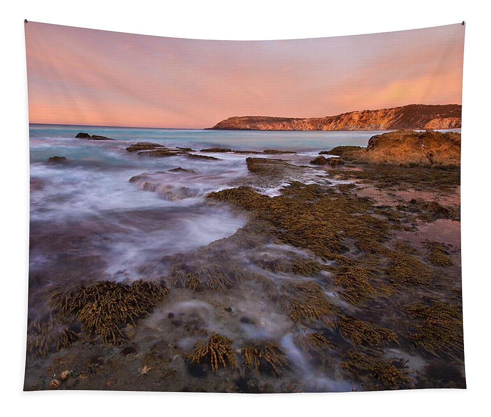 Sunrise Tapestry featuring the photograph Red Dawning by Mike Dawson