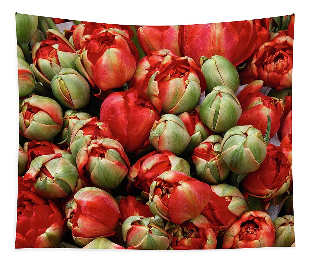 Spring Flowers Tapestry featuring the photograph Red Elegant Blooming Tulips by Michalakis Ppalis