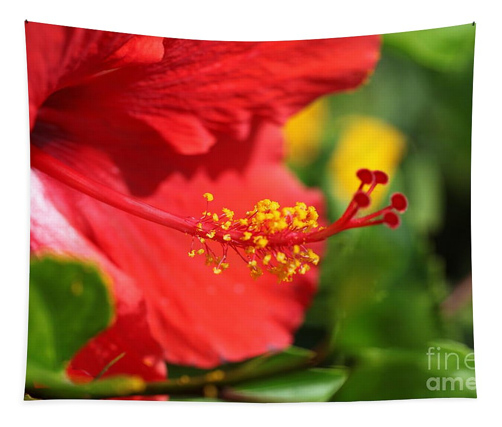 Flowers Tapestry featuring the photograph Red Hibiscus and Green by Nadine Rippelmeyer