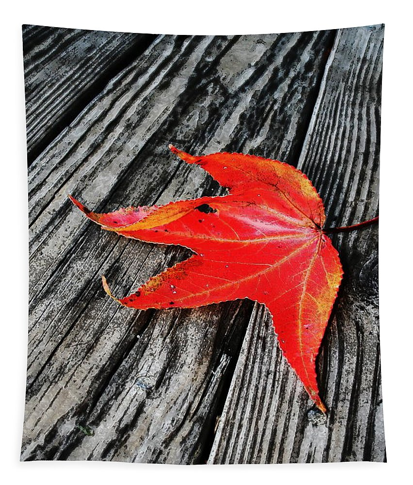 Nature Tapestry featuring the photograph Red Leaf by Linda Sannuti