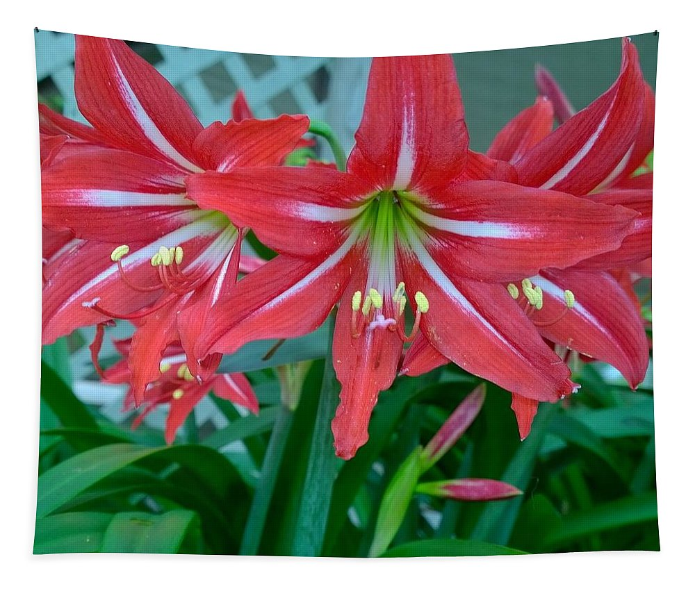Red Lilies Tapestry featuring the photograph Red Lilies by Gayle Miller