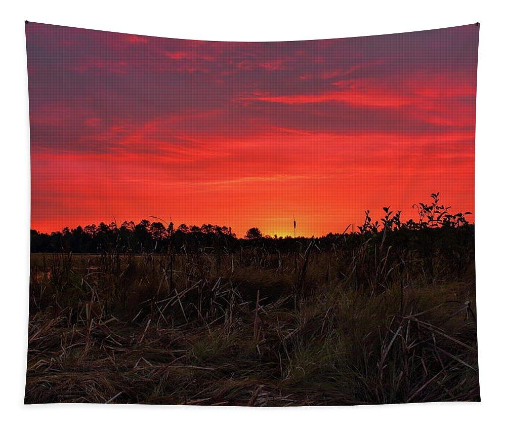 Dale Kauzlaric Tapestry featuring the photograph Red Marsh Sunrise by Dale Kauzlaric