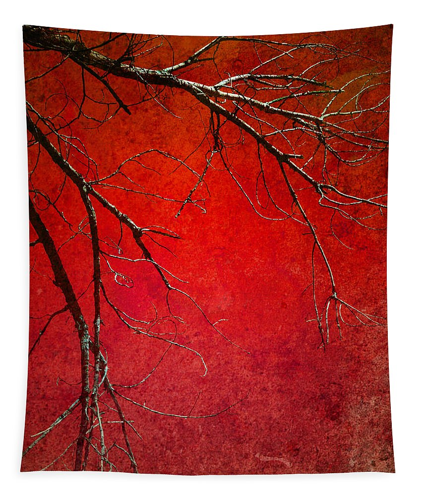 Zen Tapestry featuring the photograph Red Morning by Tara Turner
