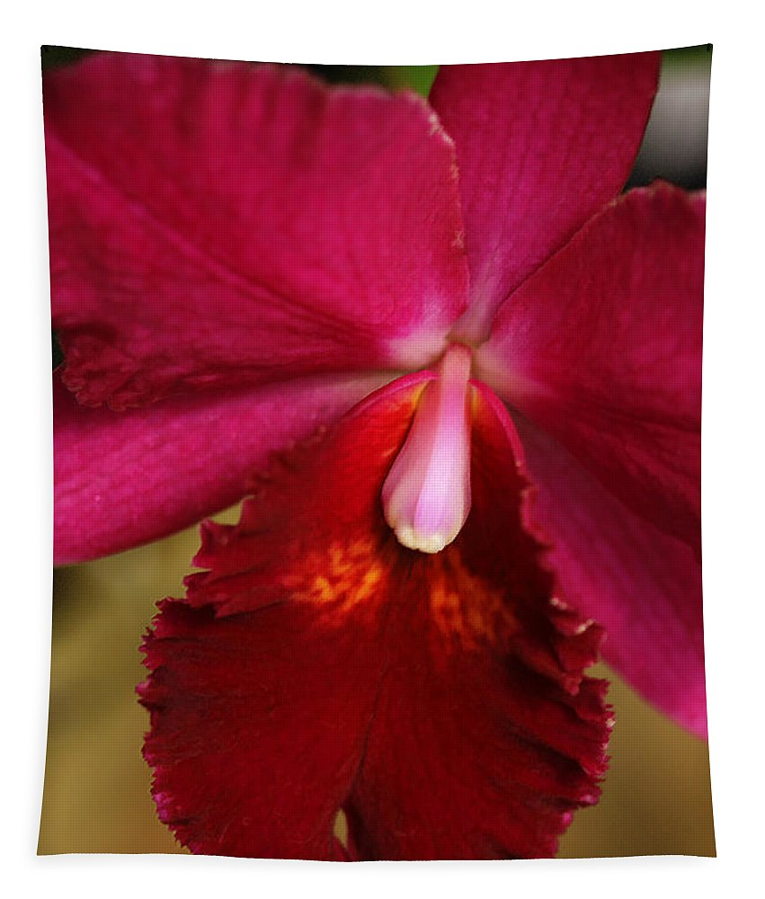 Flower Tapestry featuring the photograph Red Passion Orchid by Deborah Benoit