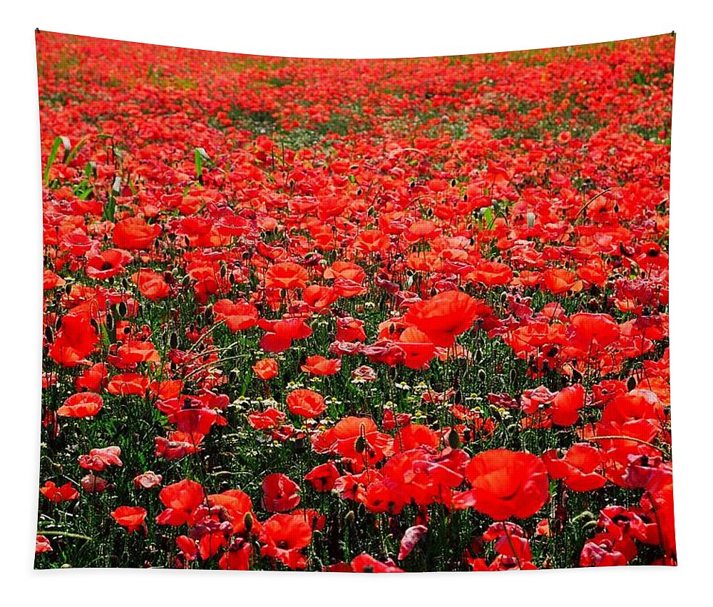 Flower Tapestry featuring the photograph Red Poppies by Juergen Weiss
