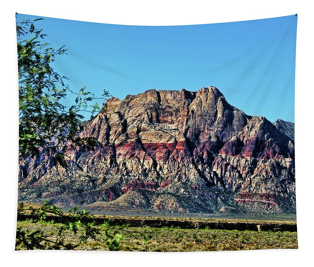 America Tapestry featuring the photograph Red Rock Canyon by Judy Vincent