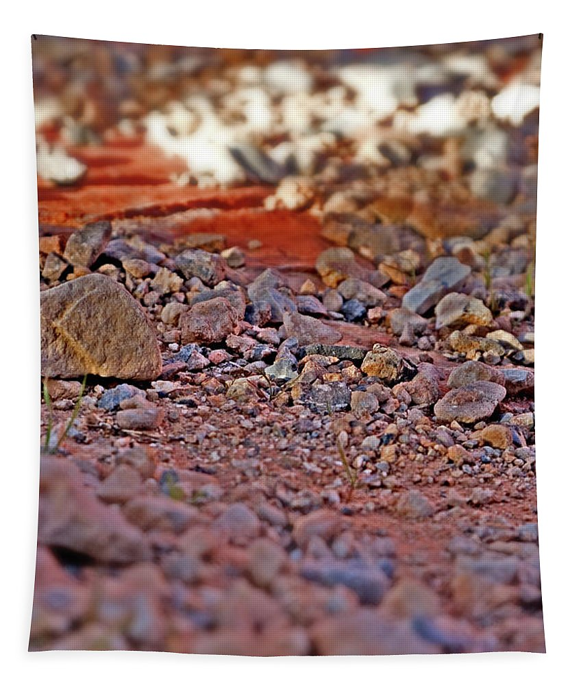 Red Rock Canyon Stones Tapestry featuring the photograph Red Rock Canyon Stones 2 by Chris Brannen