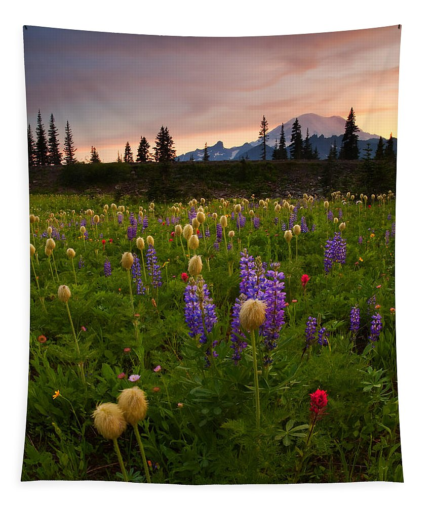 Anenome Tapestry featuring the photograph Red Sky Meadow by Mike Dawson