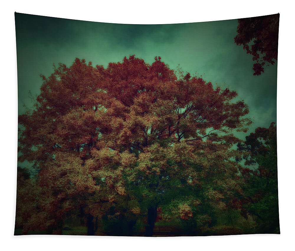 Reed Tapestry featuring the photograph Reed Tree by Ramon Martinez
