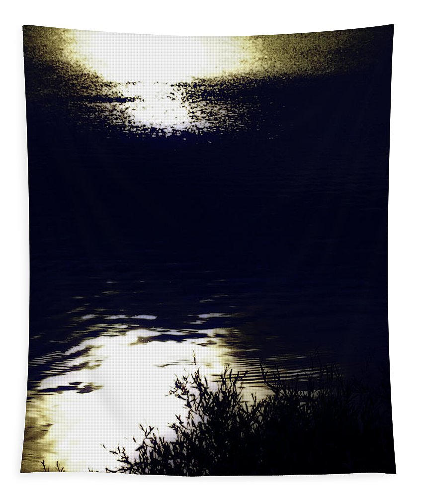 Landscape Photo Tapestry featuring the photograph Reflections by Heather Joyce Morrill