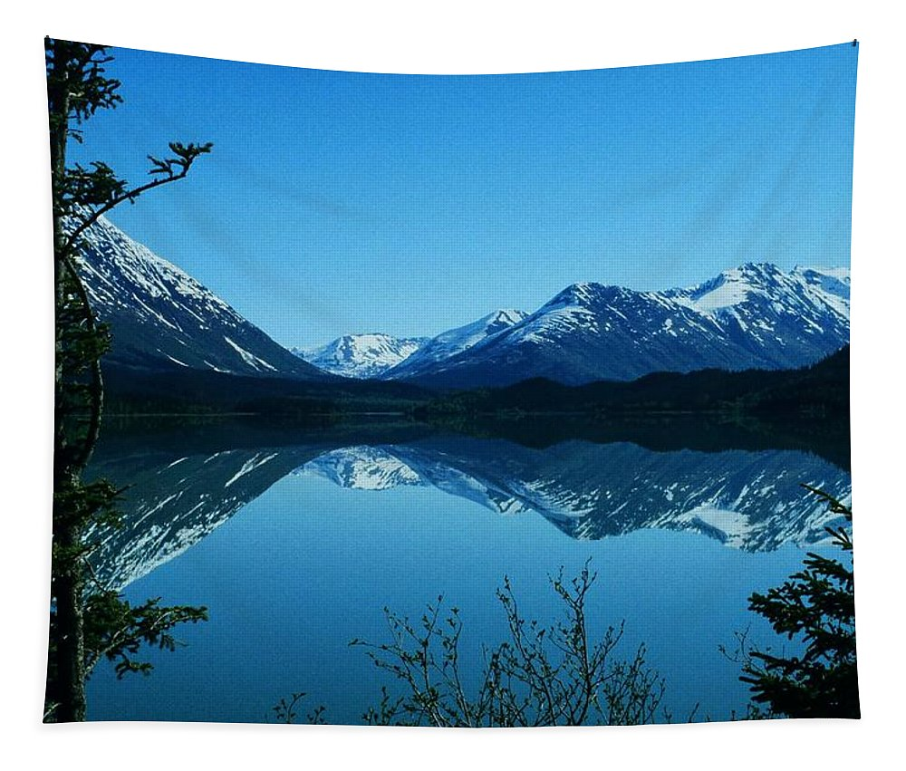 North America Tapestry featuring the photograph Reflections ... by Juergen Weiss