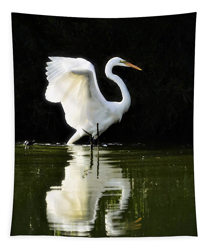 Great White Egret Tapestry featuring the photograph Reflections Of An Angel by Saija Lehtonen