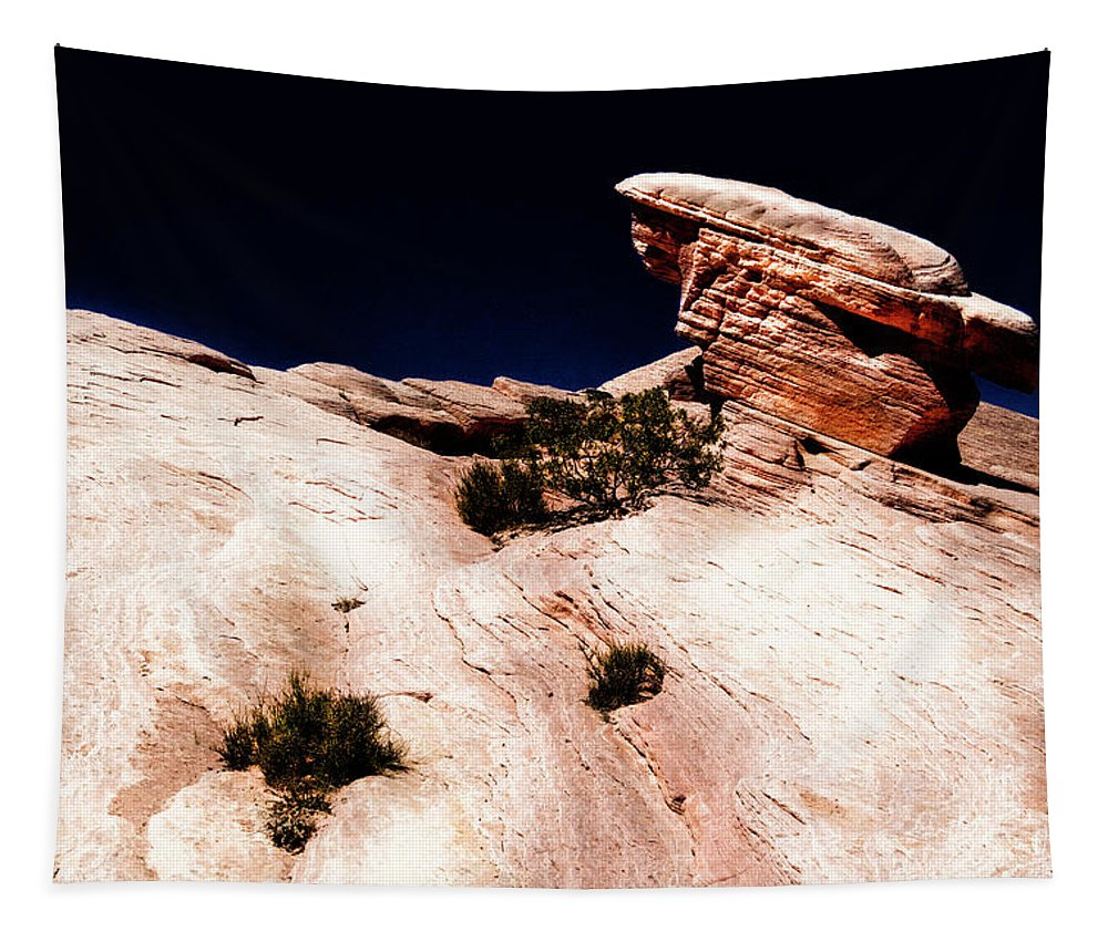 Landscape Tapestry featuring the photograph Resistant Boulder Valley Of Fire by Frank Wilson