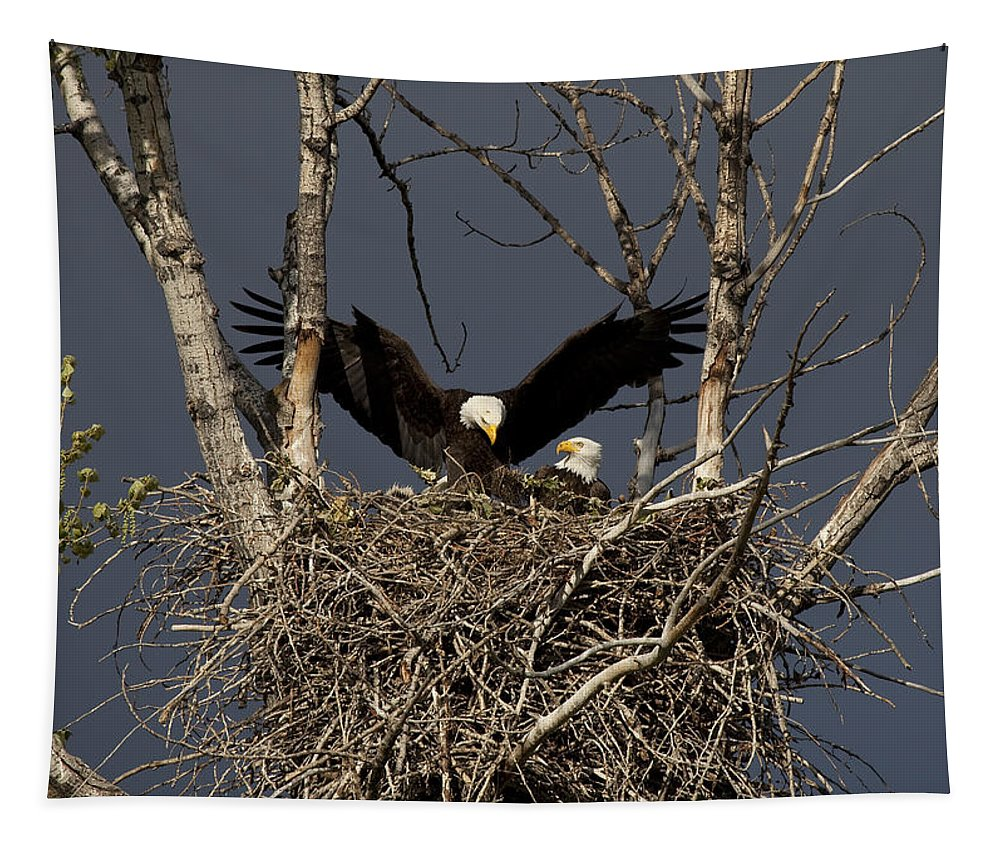 Eagle Tapestry featuring the photograph Returning Home To The Nest by Mike Dawson
