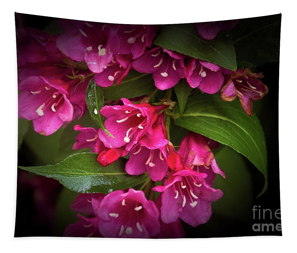 Flowers Tapestry featuring the photograph Reunion by William Norton
