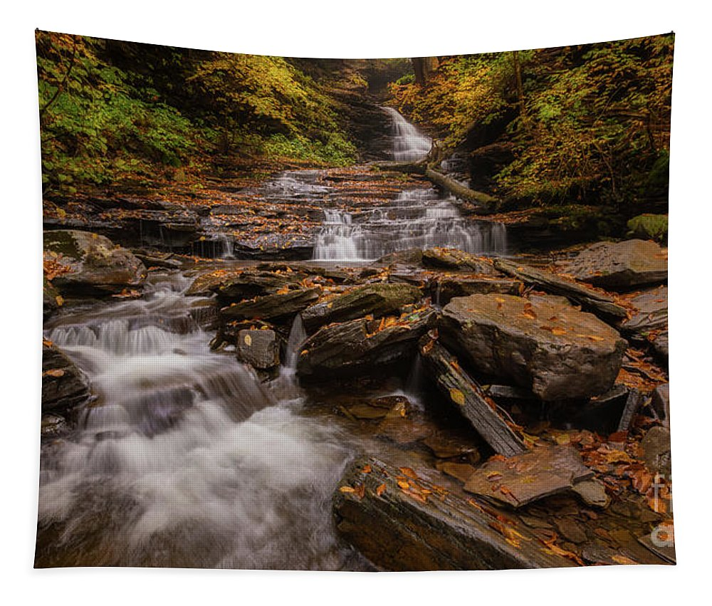 Allegheny Tapestry featuring the photograph Ricketts Glen 2 by Jerry Fornarotto