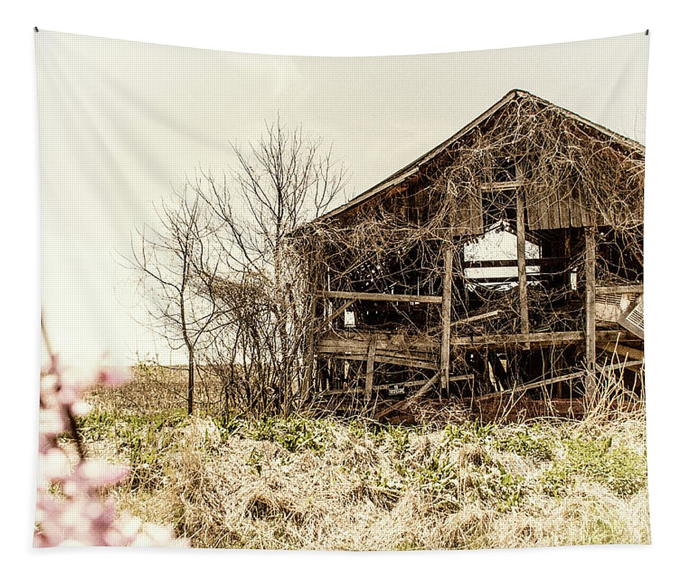 Barn Tapestry featuring the photograph Rickety Shack by Pamela Williams