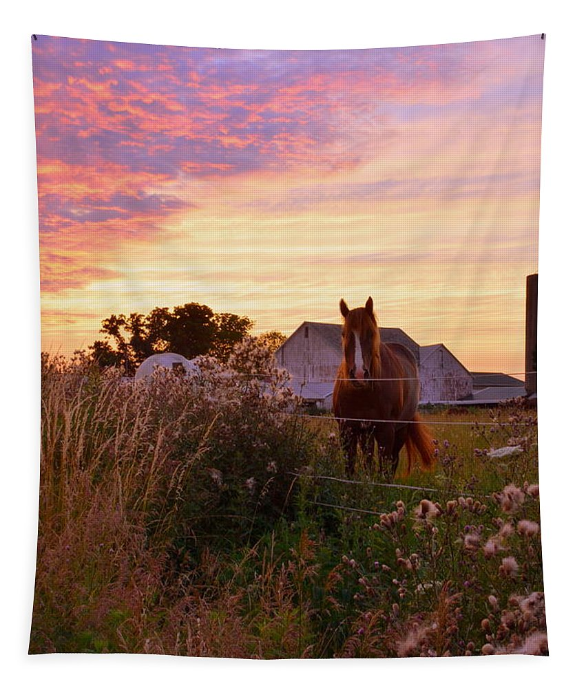Riding Off Into The Sunset Tapestry featuring the photograph Riding Off Into The Sunset by Lisa Wooten