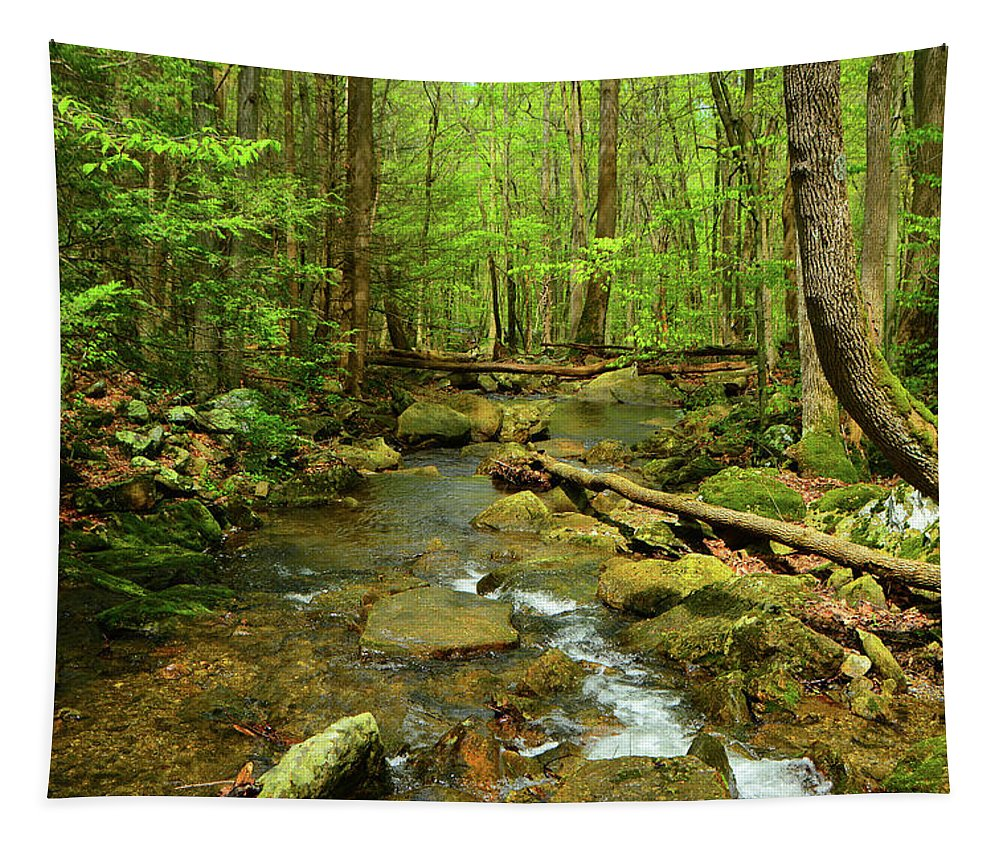 River Crossing On The Maryland Appalachian Trail Tapestry featuring the photograph River Crossing On The Maryland Appalachian Trail by Raymond Salani III