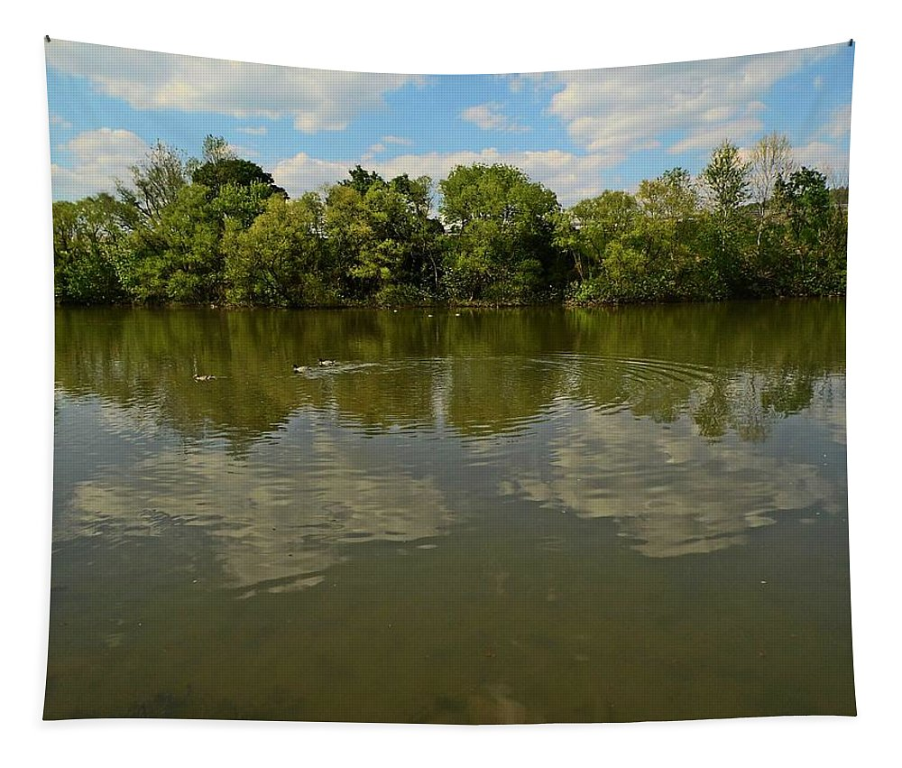 River Tapestry featuring the photograph River Reflection by Karl Rose