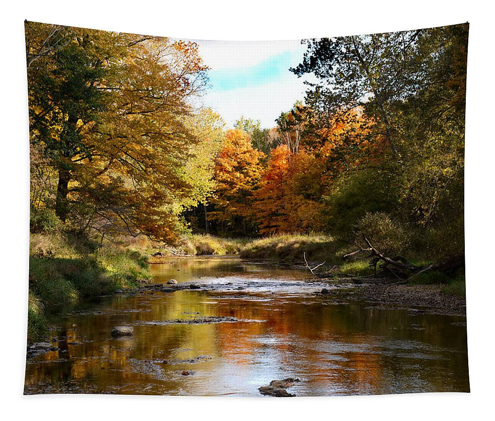 Autumn Tapestry featuring the photograph River Splendour by Barbara Treaster
