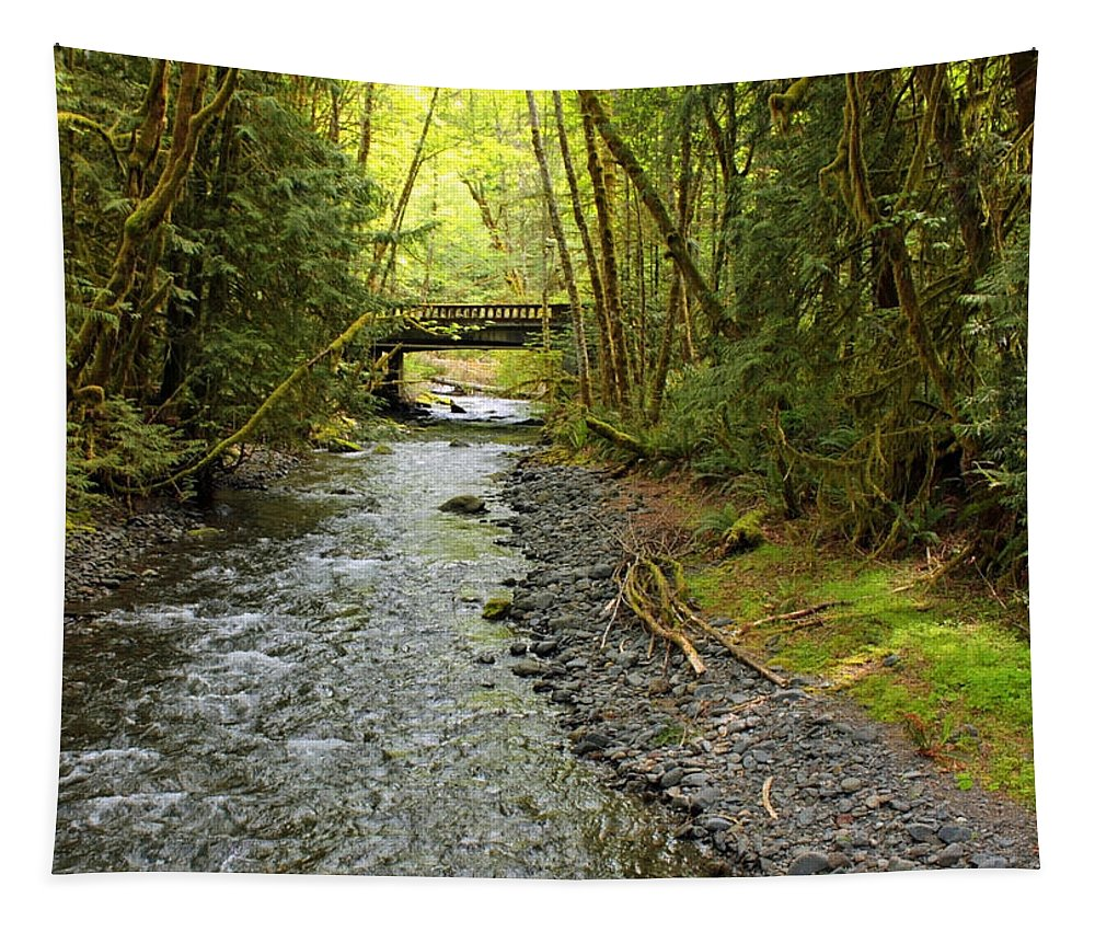 Landscape Tapestry featuring the photograph River Through The Rainforest by Carol Groenen