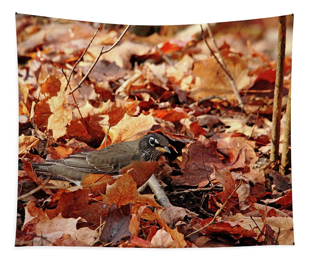 Robin Tapestry featuring the photograph Robin Playing In Fallen Leaves by Debbie Oppermann