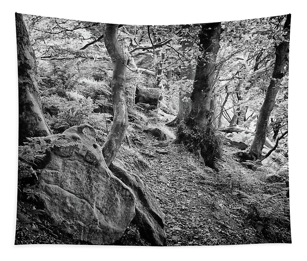 Trees Tapestry featuring the photograph Rock And Trees by Philip Openshaw