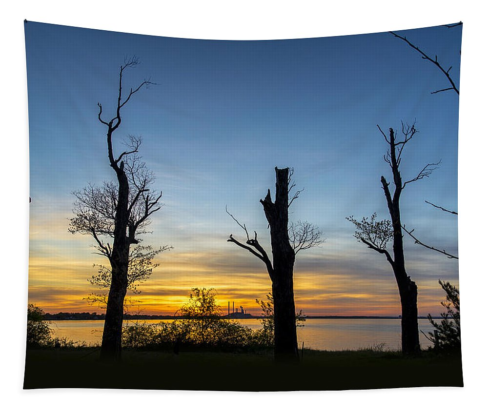 2d Tapestry featuring the photograph Rock Creek Silhouette by Brian Wallace