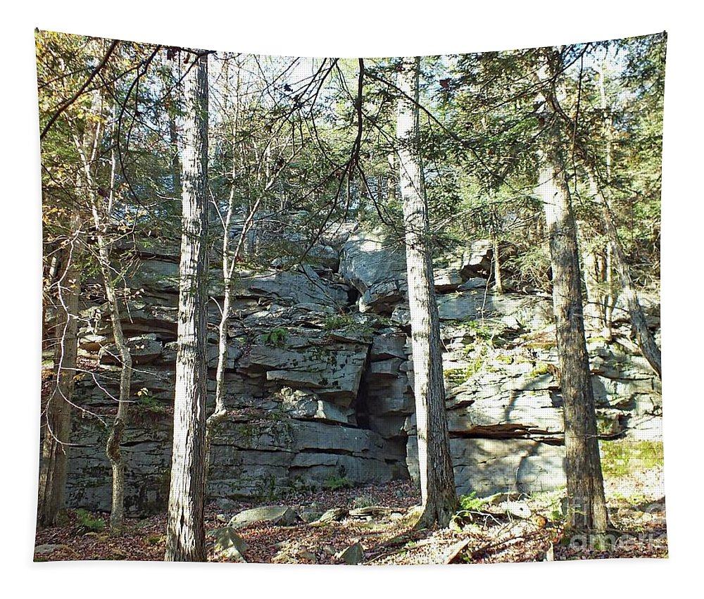 Ricketts Glen State Park Tapestry featuring the photograph Rock Formation 3 - Ricketts Glen by Cindy Treger