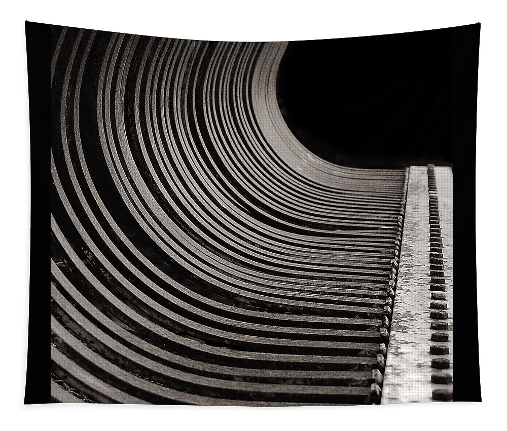Abstract Tapestry featuring the photograph Rock Rake by Susan Capuano