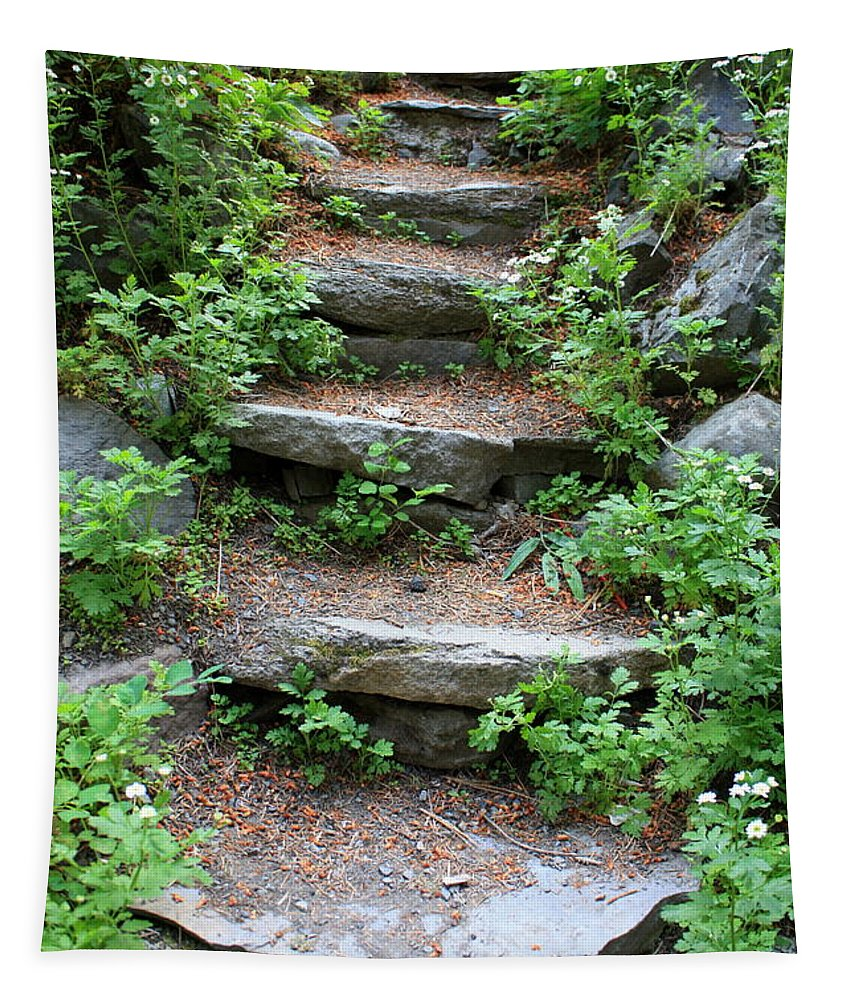 Rock Stairs Tapestry featuring the photograph Rock Stairs by Carol Groenen