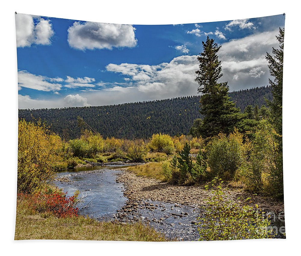 Jon Burch Tapestry featuring the photograph Rocky Mountain Afternoon by Jon Burch Photography