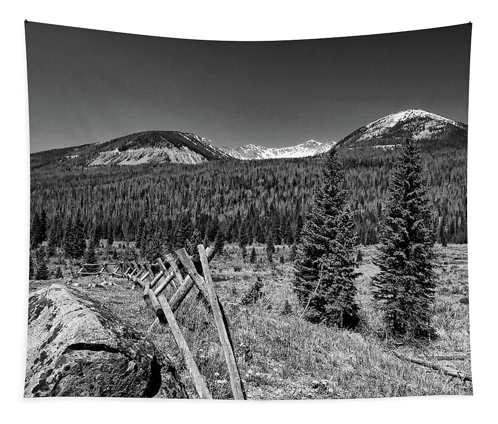 America Tapestry featuring the photograph Rocky Mountain National Park Black And White by Judy Vincent