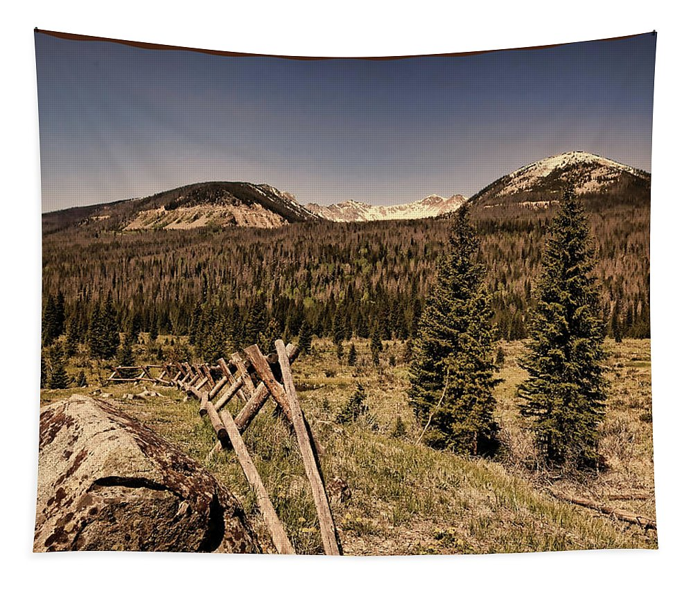Rocky Mountain National Park Tapestry featuring the photograph Rocky Mountain National Park Vintage by Judy Vincent