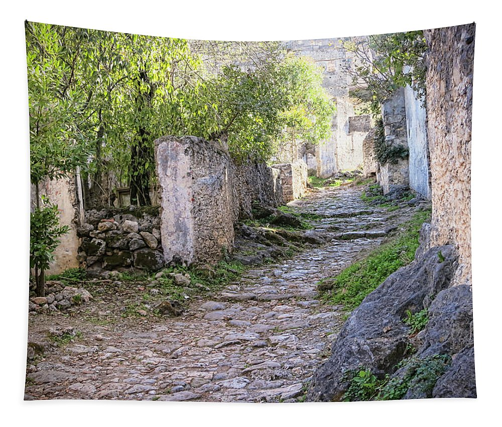 Rocky Pathway Tapestry featuring the photograph Rocky Pathway by Phyllis Taylor