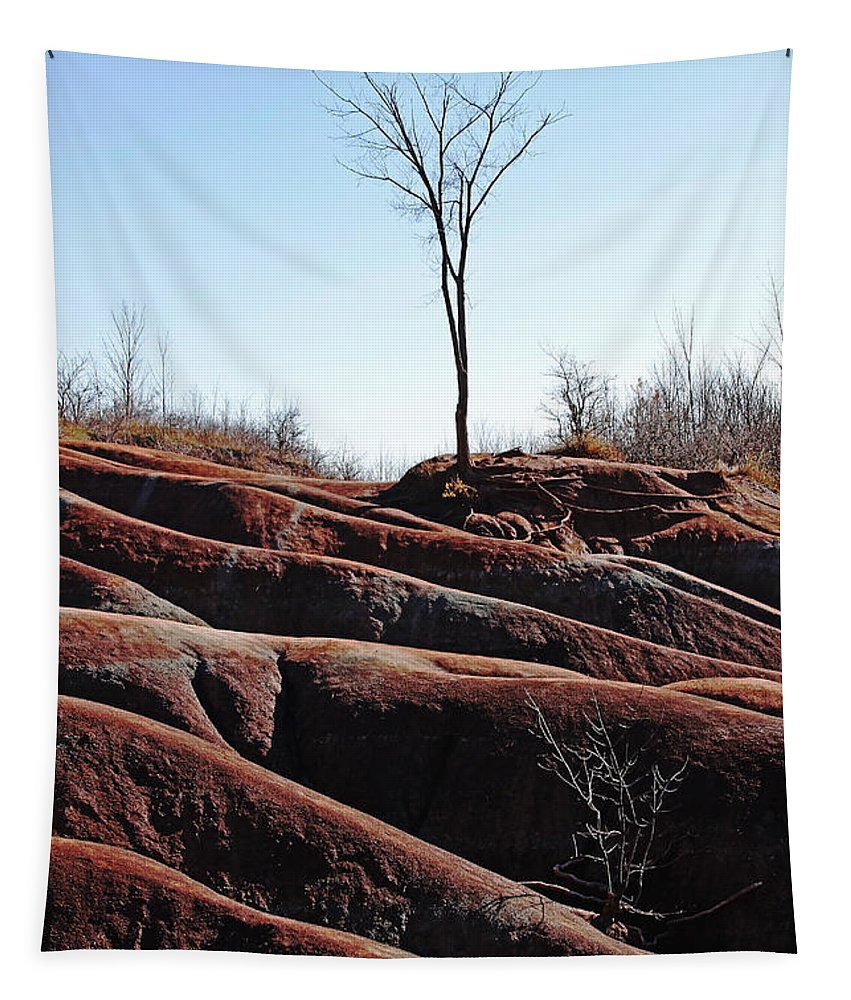 Caledon Tapestry featuring the photograph Rolling Red Badlands by Debbie Oppermann