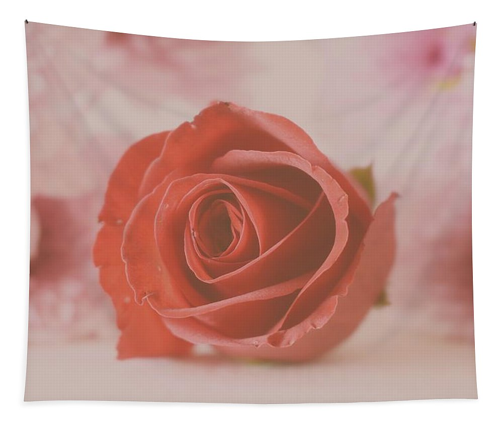 Rose Tapestry featuring the photograph Rose #004 by Ninie AG