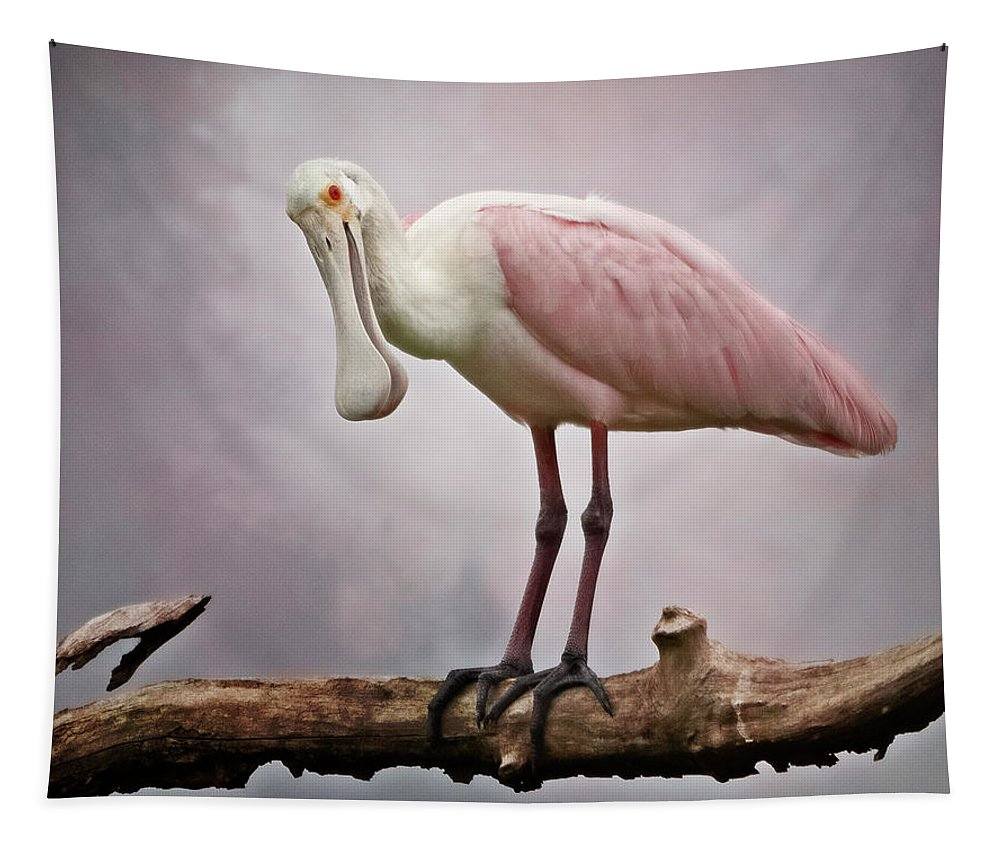 Joan Carroll Tapestry featuring the photograph Roseate Spoonbill Costa Rica by Joan Carroll