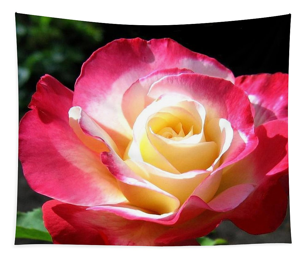 Rose Tapestry featuring the photograph Roses 7 by Will Borden