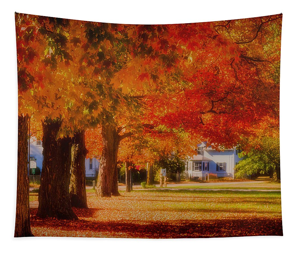 #jefffolger Tapestry featuring the photograph Row Of Maples by Jeff Folger