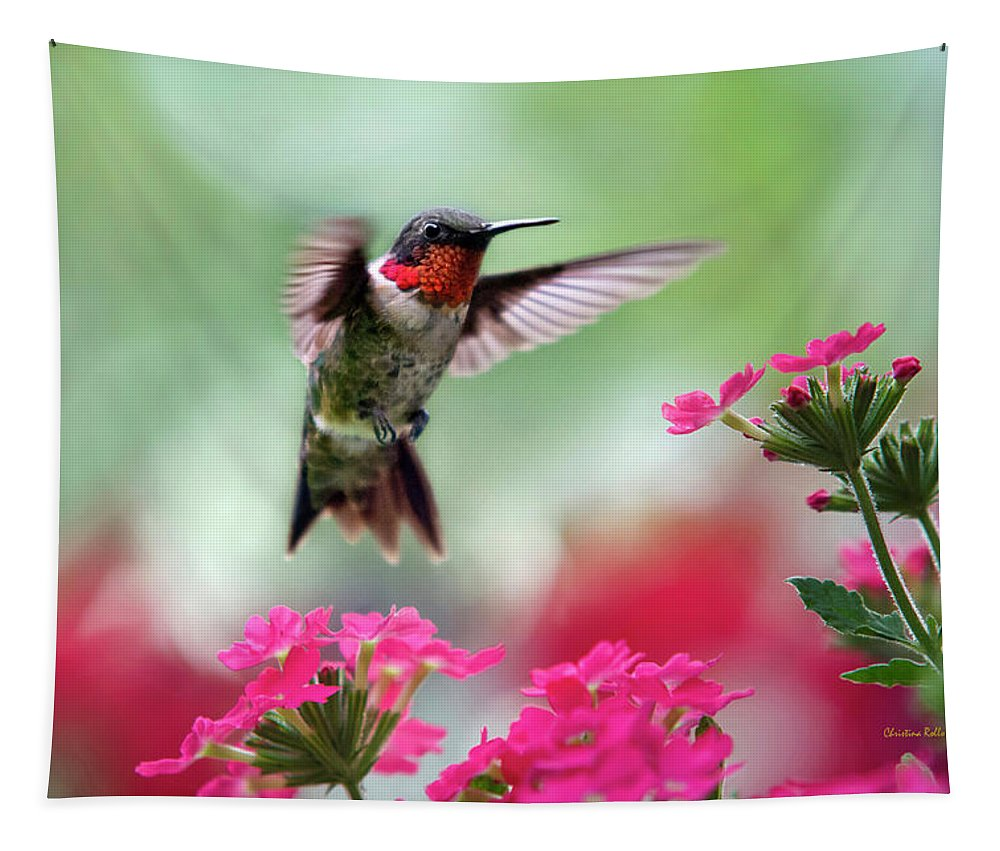 Hummingbird Tapestry featuring the photograph Ruby Garden Jewel by Christina Rollo