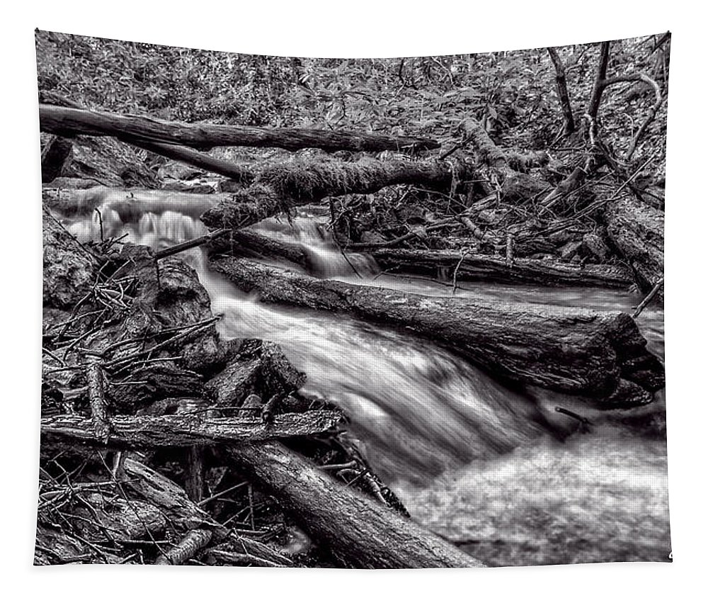 Christopher Holmes Photography Tapestry featuring the photograph Rushing Stream - Bw by Christopher Holmes