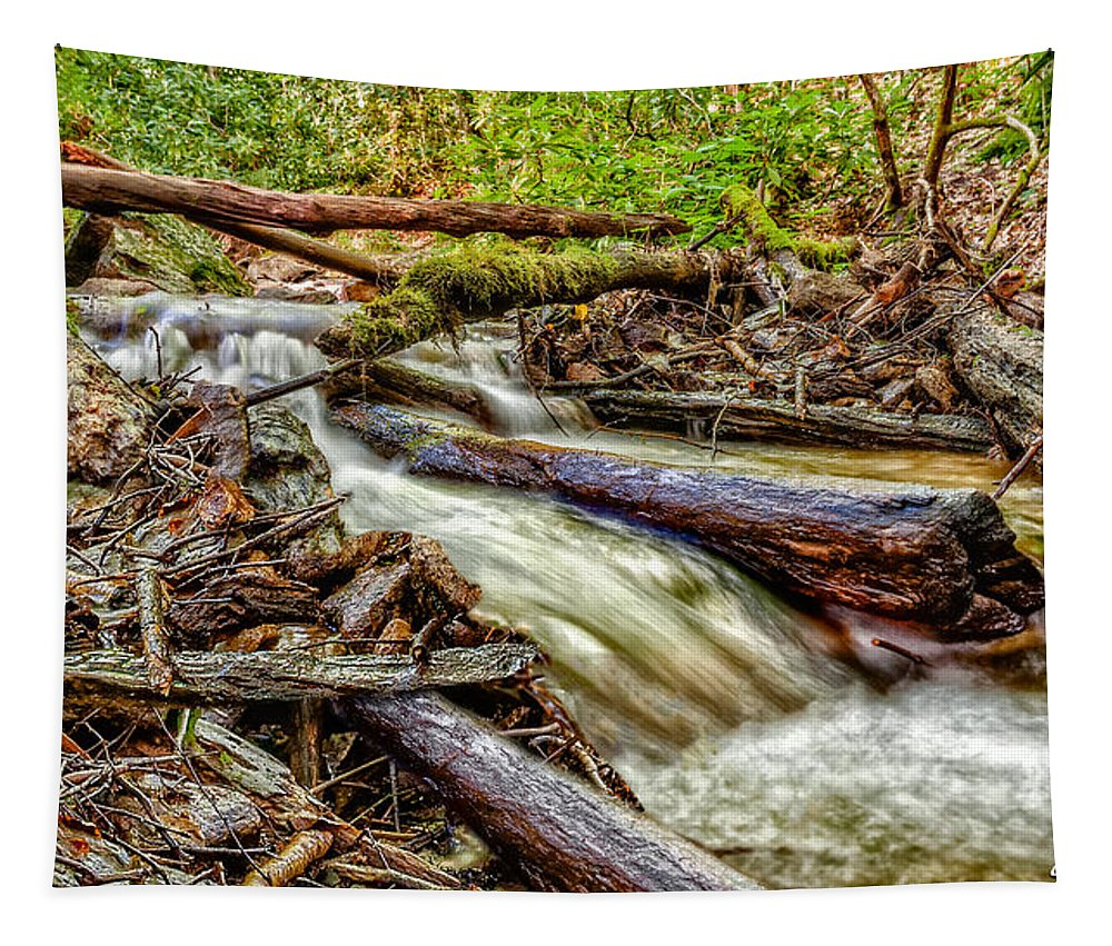 Christopher Holmes Photography Tapestry featuring the photograph Rushing Stream by Christopher Holmes