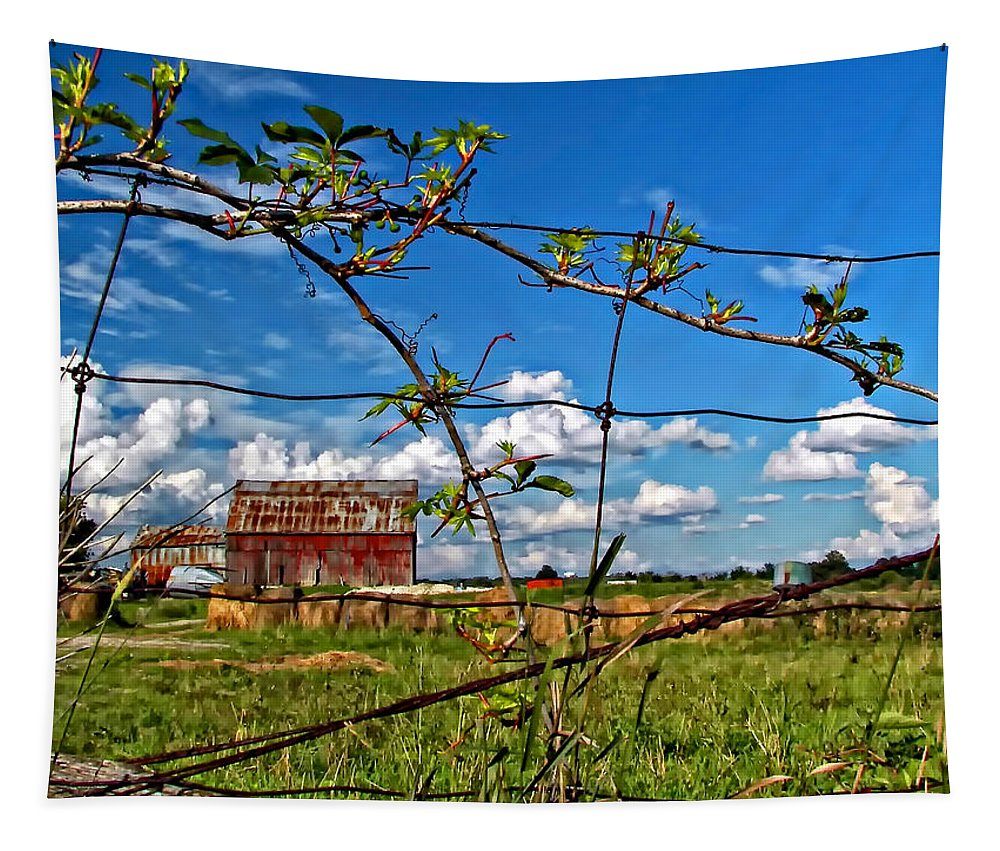Fence Tapestry featuring the photograph Rustic Frame by Steve Harrington