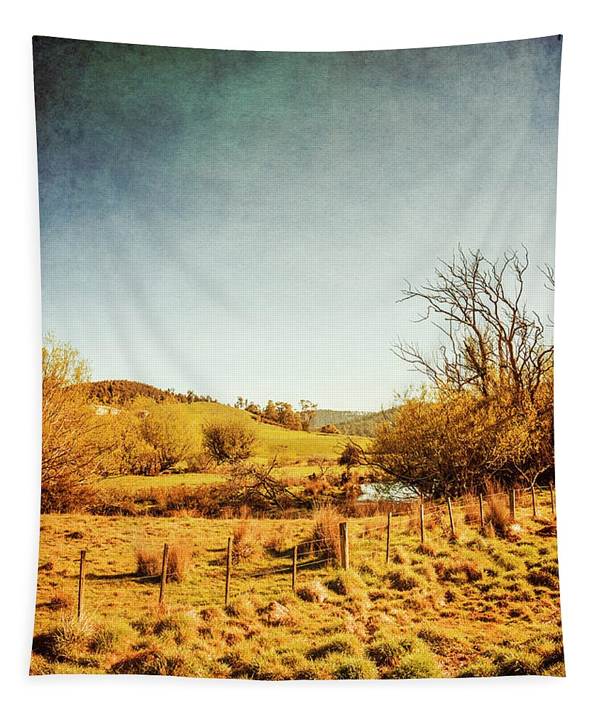Australia Tapestry featuring the photograph Rustic Pastoral Australia by Jorgo Photography - Wall Art Gallery